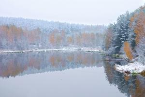 W zimowej szacie